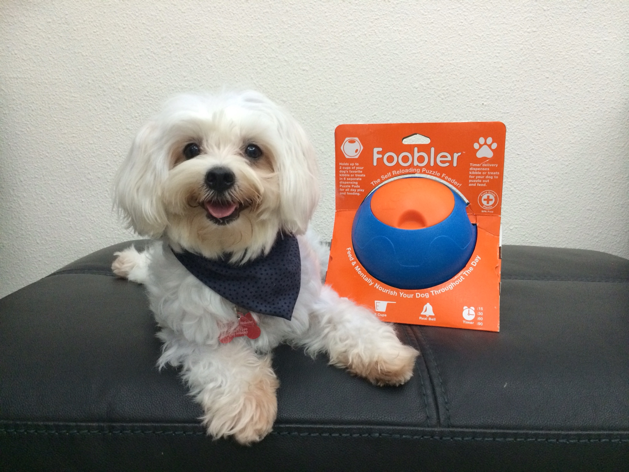 The Foobler Reviewed